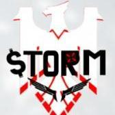 ReevStorM